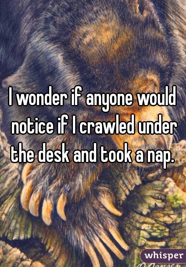 I wonder if anyone would notice if I crawled under the desk and took a nap.