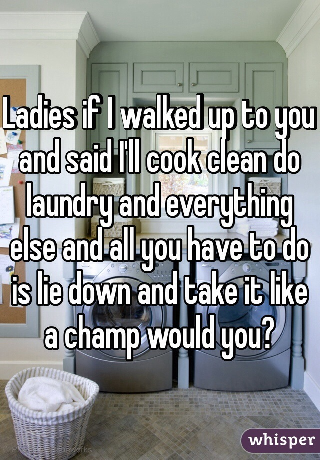 Ladies if I walked up to you and said I'll cook clean do laundry and everything else and all you have to do is lie down and take it like a champ would you?
