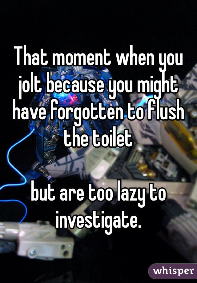 That moment when you jolt because you might have forgotten to flush the toilet   but are too lazy to investigate.