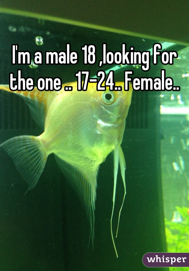 I'm a male 18 ,looking for the one .. 17-24.. Female..