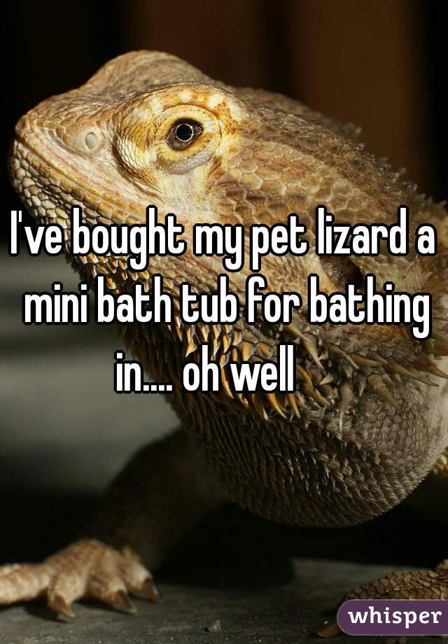 I've bought my pet lizard a mini bath tub for bathing in.... oh well