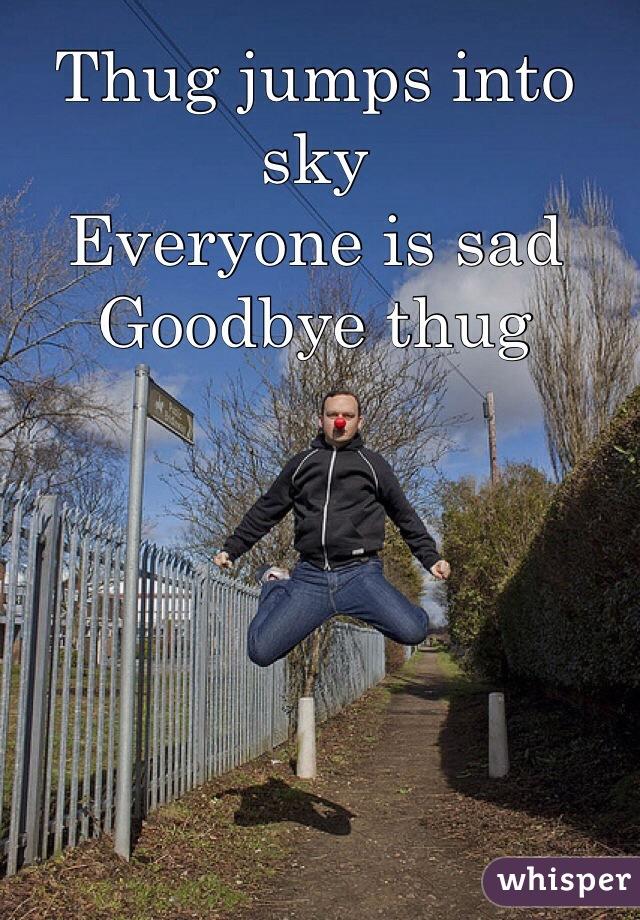 Thug jumps into sky Everyone is sad Goodbye thug