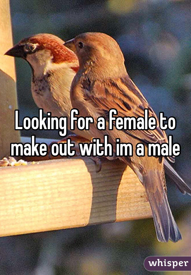 Looking for a female to make out with im a male