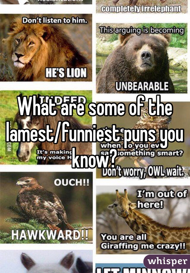 What are some of the lamest/funniest puns you know?