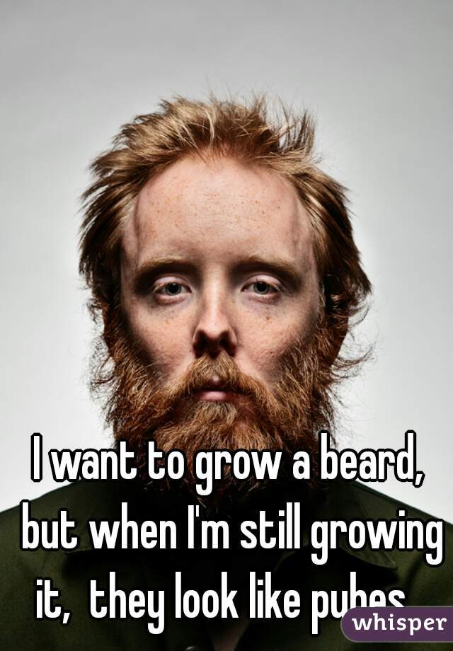 I want to grow a beard, but when I'm still growing it,  they look like pubes...