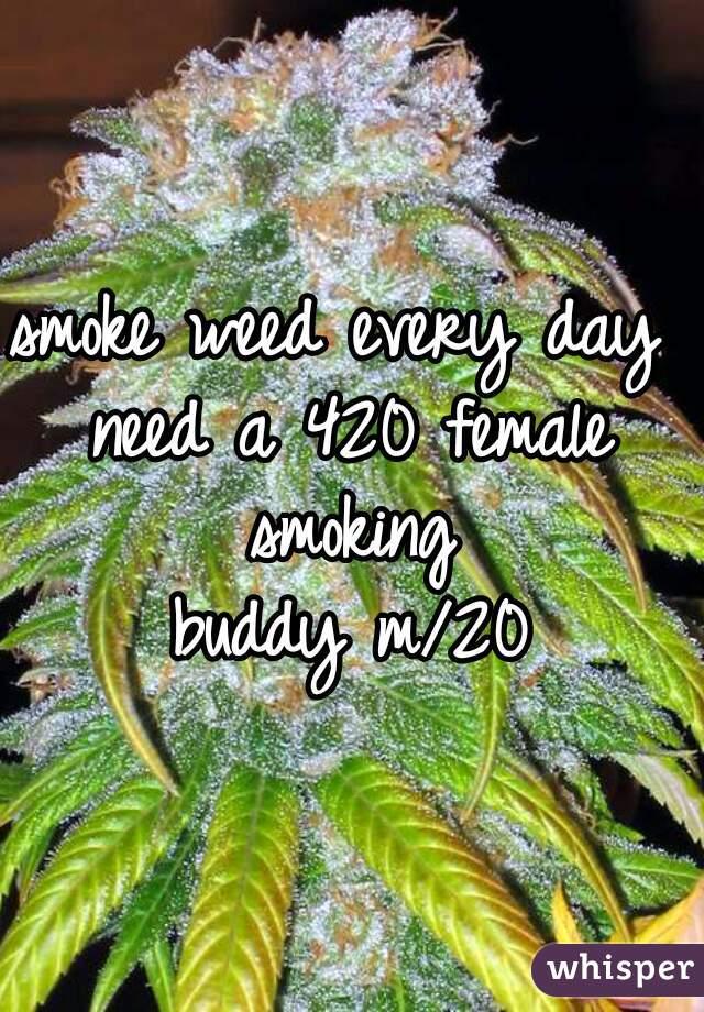 smoke weed every day  need a 420 female smoking  buddy m/20