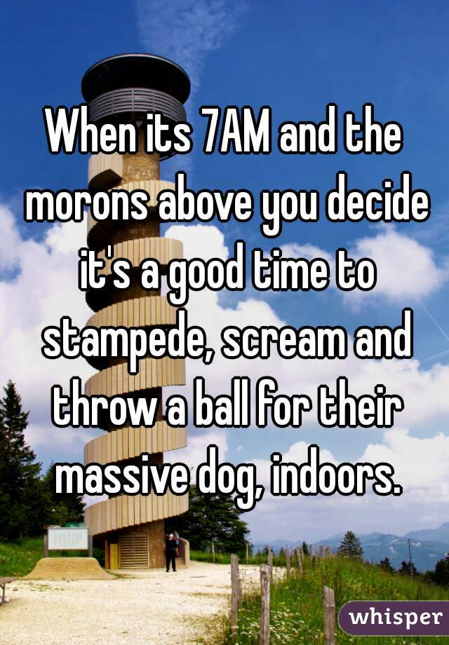 When its 7AM and the morons above you decide it's a good time to stampede, scream and throw a ball for their massive dog, indoors.