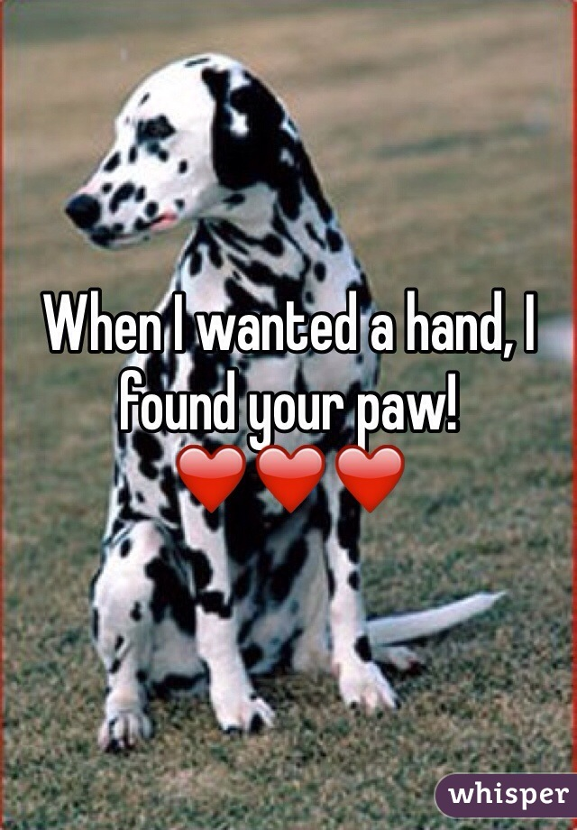 When I wanted a hand, I found your paw! ❤️❤️❤️