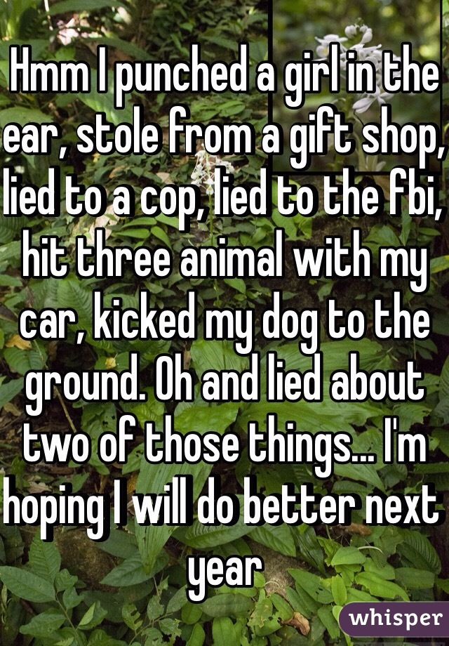 Hmm I punched a girl in the ear, stole from a gift shop, lied to a cop, lied to the fbi, hit three animal with my car, kicked my dog to the ground. Oh and lied about two of those things... I'm hoping I will do better next year