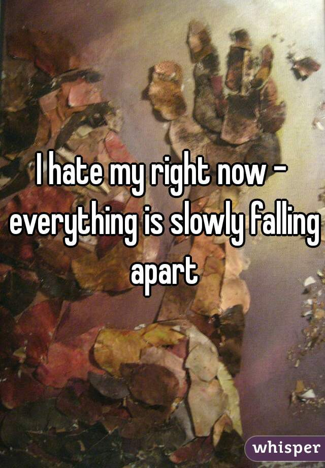 I hate my right now - everything is slowly falling apart