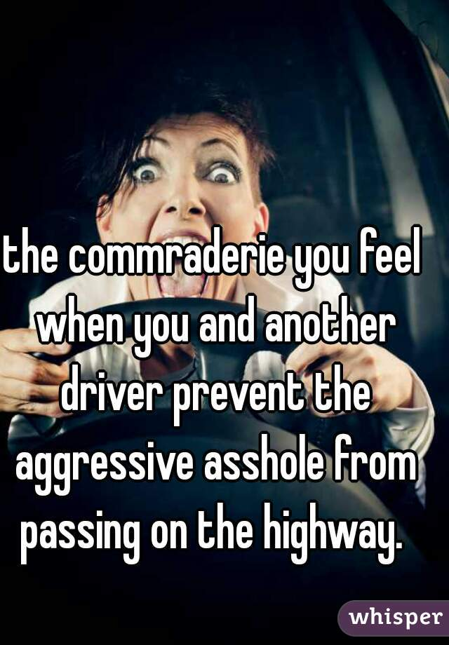 the commraderie you feel when you and another driver prevent the aggressive asshole from passing on the highway.
