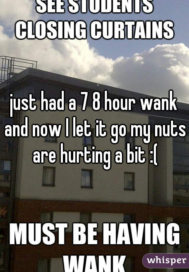 just had a 7 8 hour wank and now I let it go my nuts are hurting a bit :(