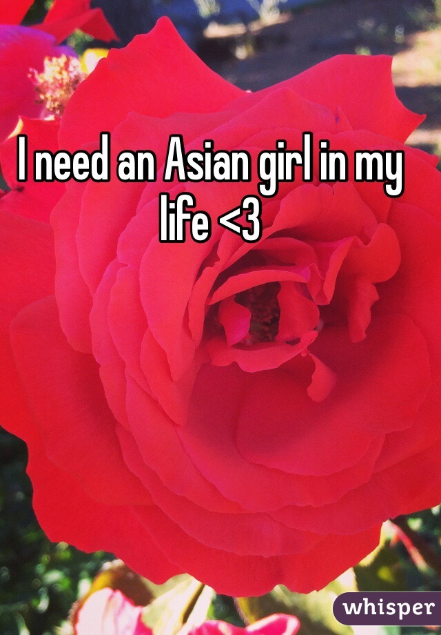 I need an Asian girl in my life <3