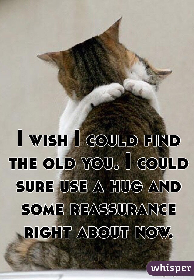 I wish I could find the old you. I could sure use a hug and some reassurance right about now.