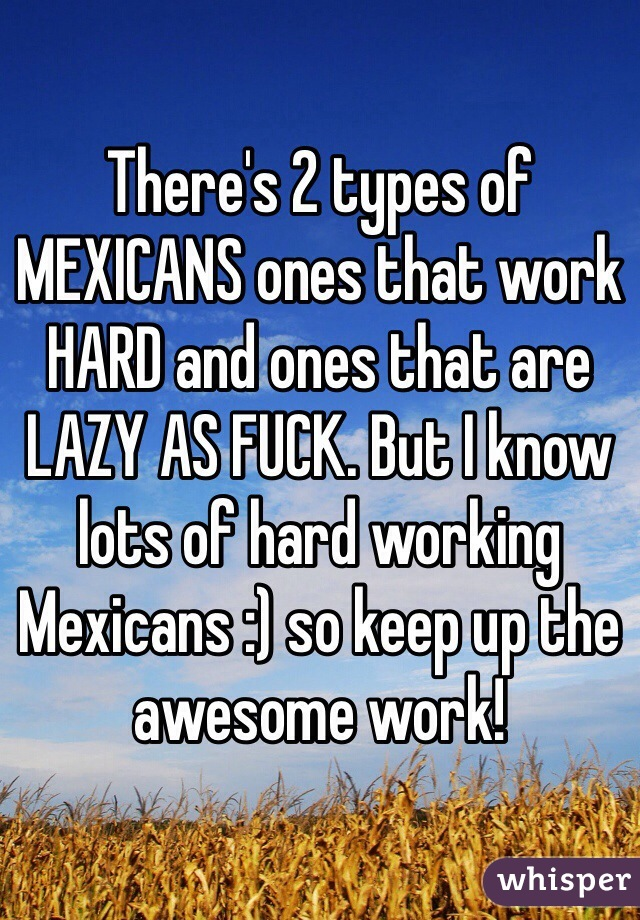 There's 2 types of MEXICANS ones that work HARD and ones that are LAZY AS FUCK. But I know lots of hard working Mexicans :) so keep up the awesome work!