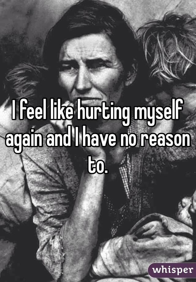 I feel like hurting myself again and I have no reason to.