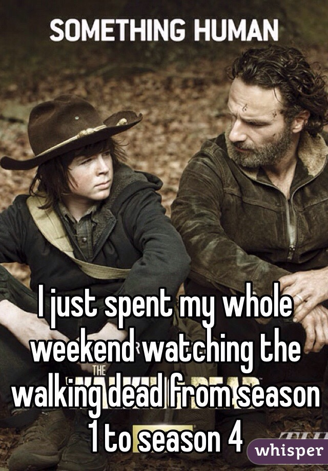 I just spent my whole weekend watching the walking dead from season 1 to season 4