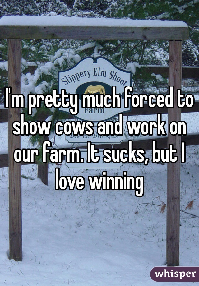 I'm pretty much forced to show cows and work on our farm. It sucks, but I love winning