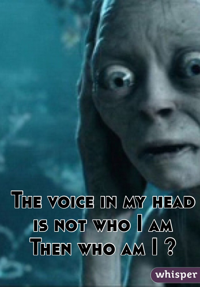 The voice in my head is not who I am  Then who am I ?