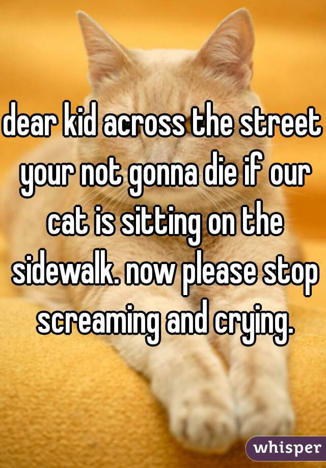 dear kid across the street your not gonna die if our cat is sitting on the sidewalk. now please stop screaming and crying.