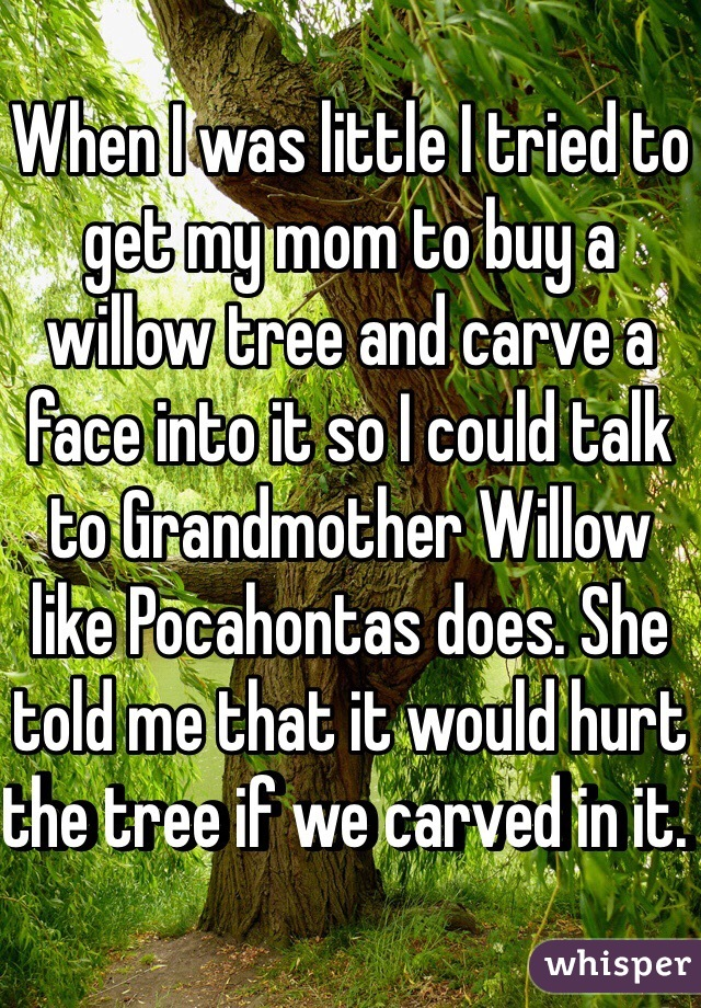When I was little I tried to get my mom to buy a willow tree and carve a face into it so I could talk to Grandmother Willow like Pocahontas does. She told me that it would hurt the tree if we carved in it.