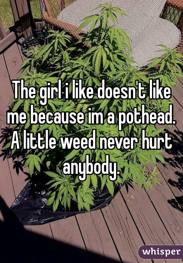 The girl i like doesn't like me because im a pothead. A little weed never hurt anybody.