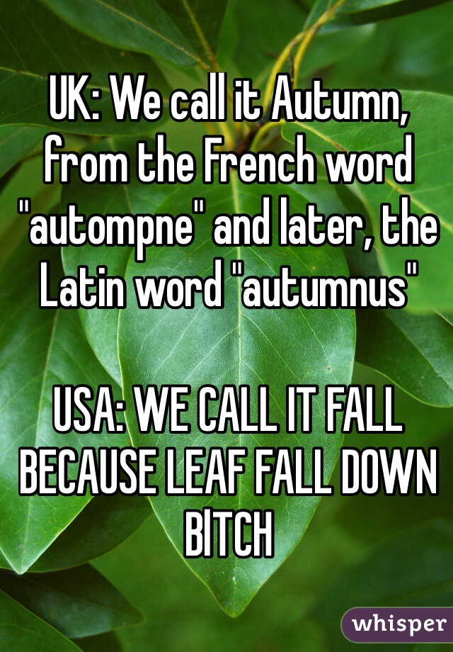 "UK: We call it Autumn, from the French word ""autompne"" and later, the Latin word ""autumnus""  USA: WE CALL IT FALL BECAUSE LEAF FALL DOWN BlTCH"