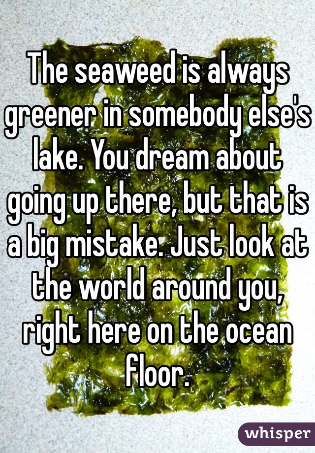 The seaweed is always greener in somebody else's lake. You dream about going up there, but that is a big mistake. Just look at the world around you, right here on the ocean floor.