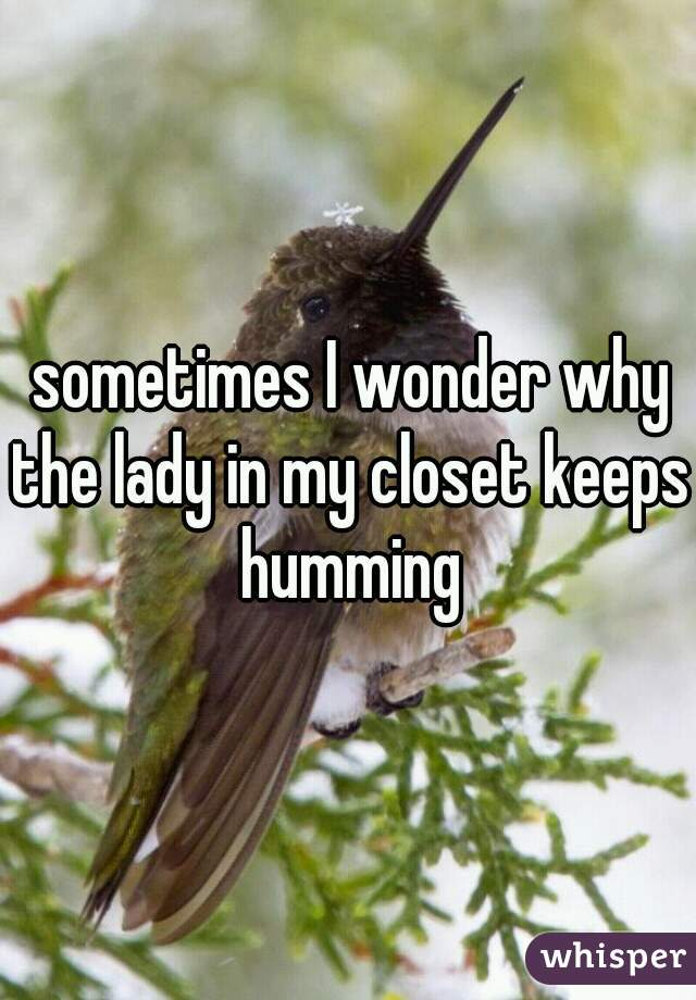 sometimes I wonder why the lady in my closet keeps humming
