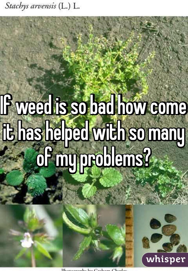If weed is so bad how come it has helped with so many of my problems?