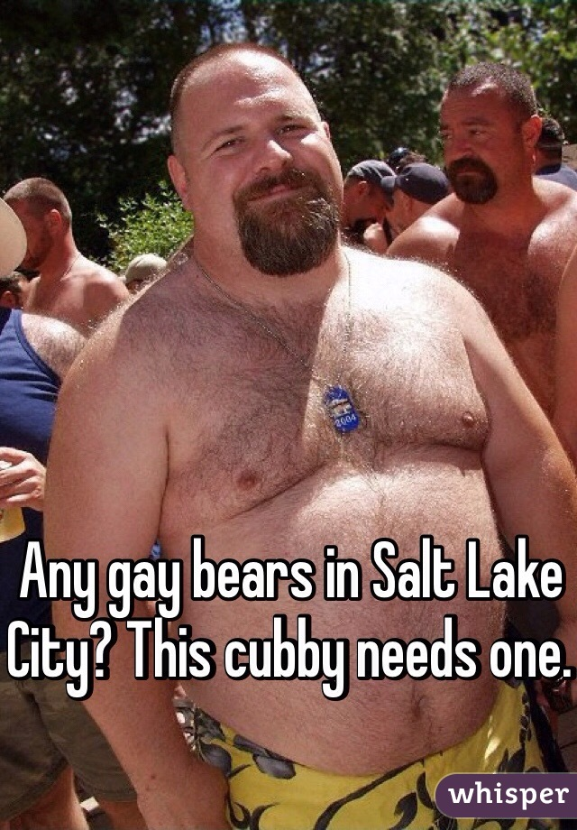 from Maison tri cities gay bears