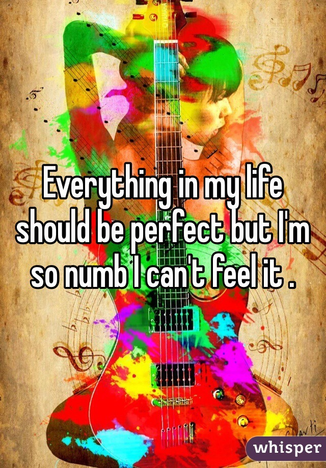 Everything in my life should be perfect but I'm so numb I can't feel it .