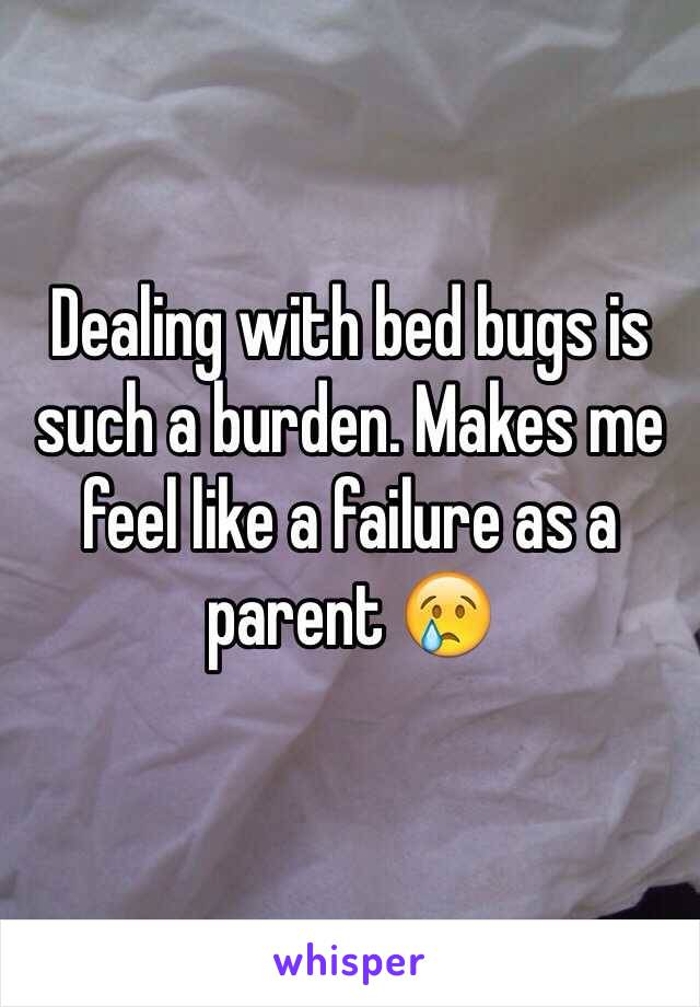 Dealing with bed bugs is such a burden. Makes me feel like a failure as a parent 
