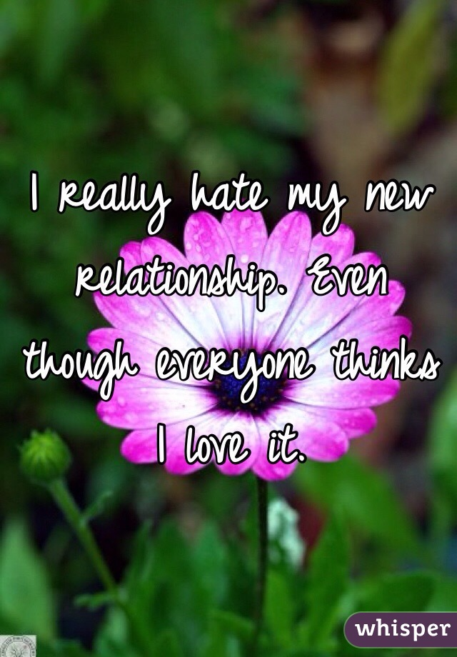 I really hate my new relationship. Even though everyone thinks I love it.