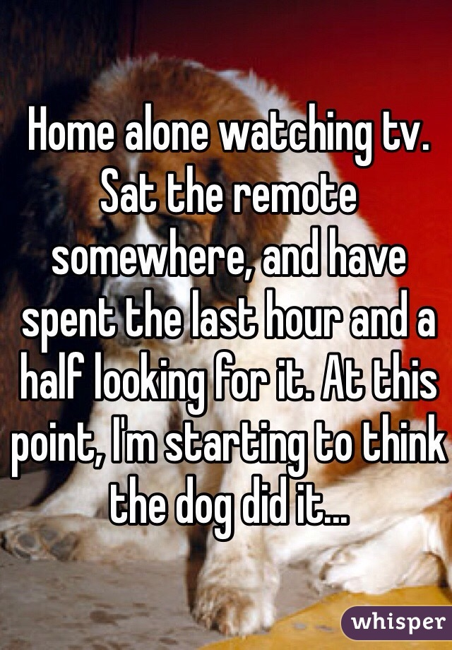 Home alone watching tv. Sat the remote somewhere, and have spent the last hour and a half looking for it. At this point, I'm starting to think the dog did it...