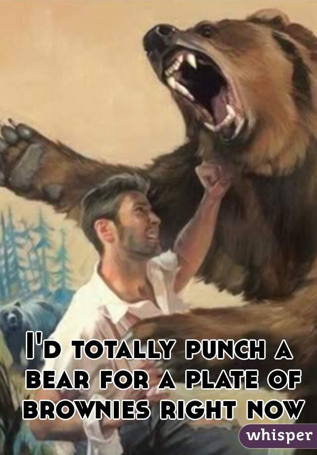 I'd totally punch a bear for a plate of brownies right now