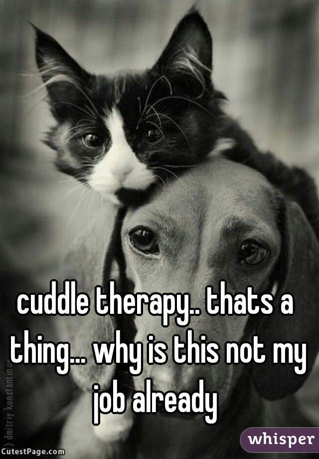 cuddle therapy.. thats a thing... why is this not my job already