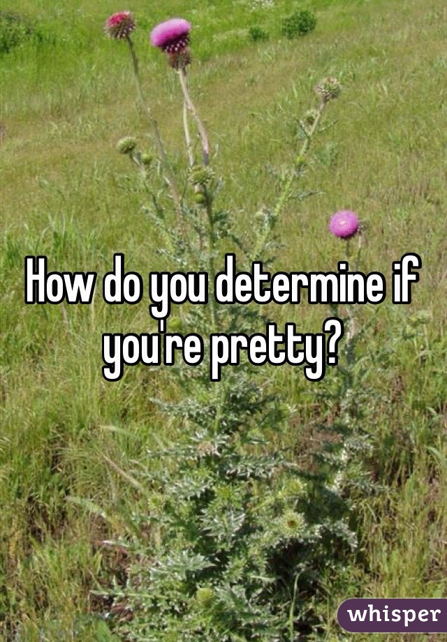 How do you determine if you're pretty?
