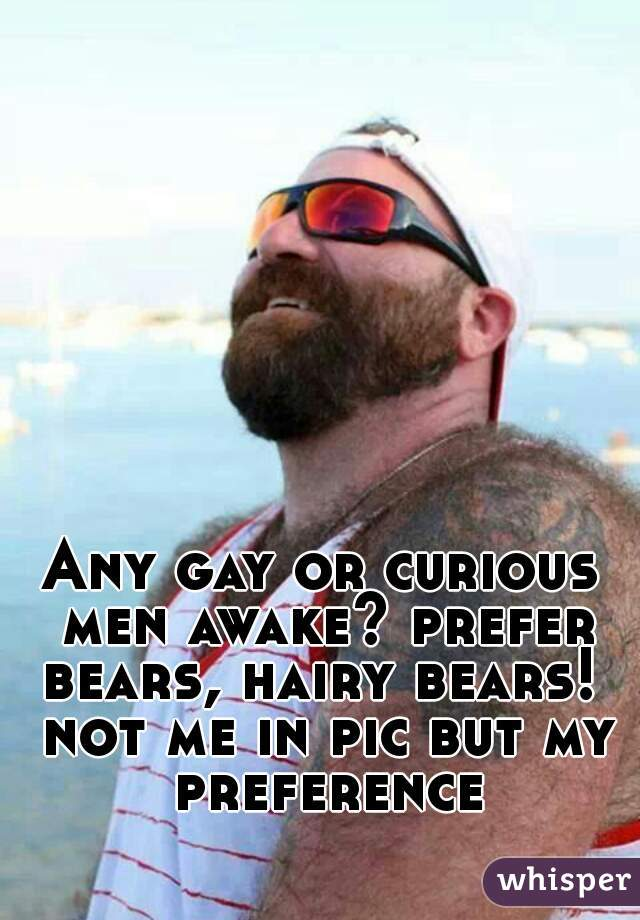 Any gay or curious men awake? prefer bears, hairy bears!  not me in pic but my preference