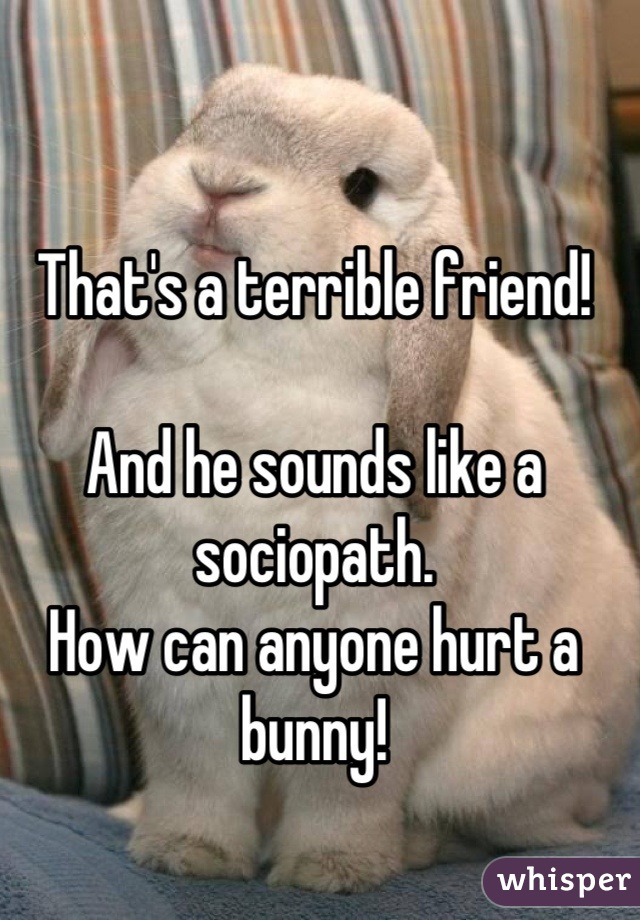 That's a terrible friend!   And he sounds like a sociopath. How can anyone hurt a bunny!