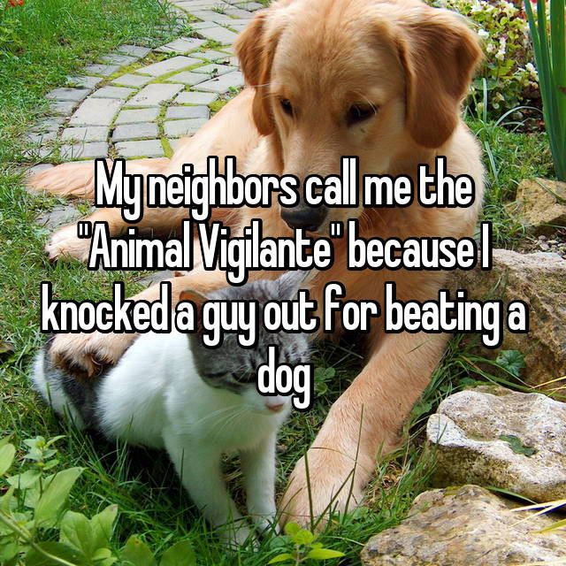 "My neighbors call me the ""Animal Vigilante"" because I knocked a guy out for beating a dog"