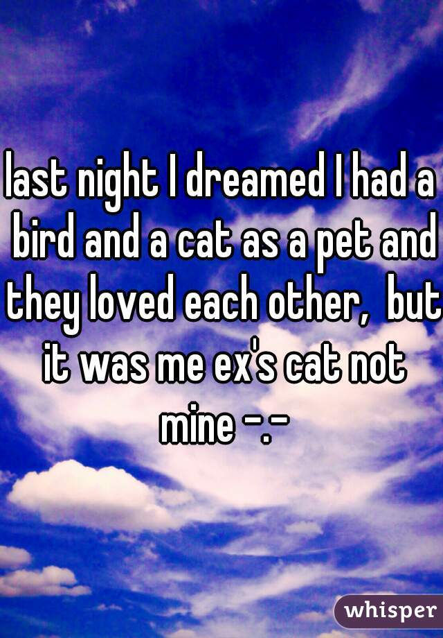 last night I dreamed I had a bird and a cat as a pet and they loved each other,  but it was me ex's cat not mine -.-