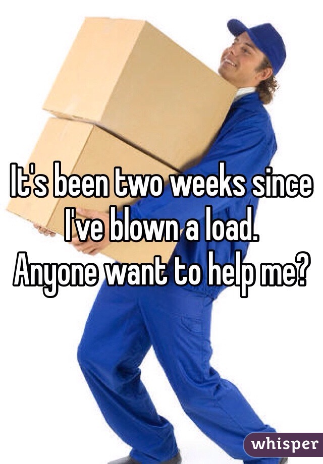 It's been two weeks since I've blown a load.  Anyone want to help me?