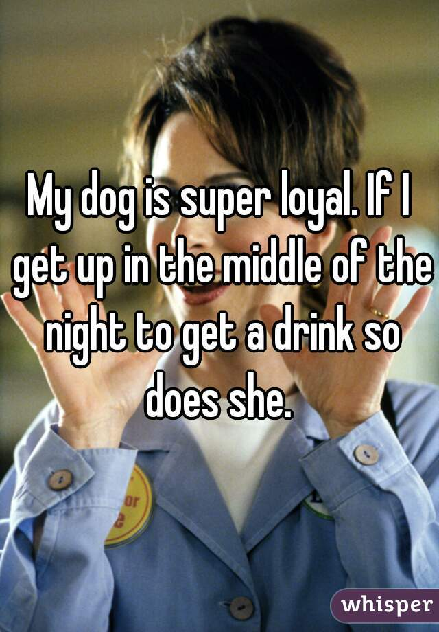 My dog is super loyal. If I get up in the middle of the night to get a drink so does she.
