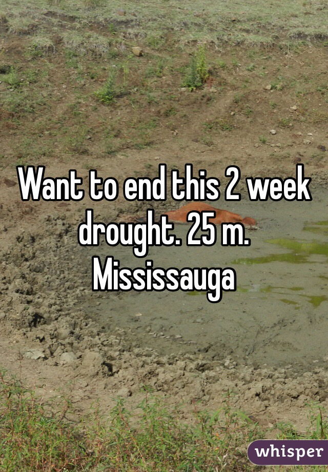 Want to end this 2 week drought. 25 m. Mississauga