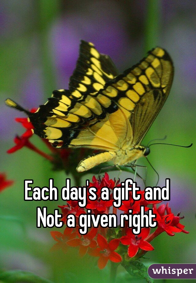Each day's a gift and Not a given right