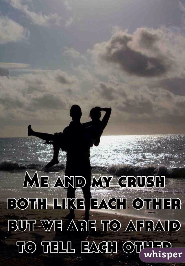 Me and my crush both like each other but we are to afraid to tell each other