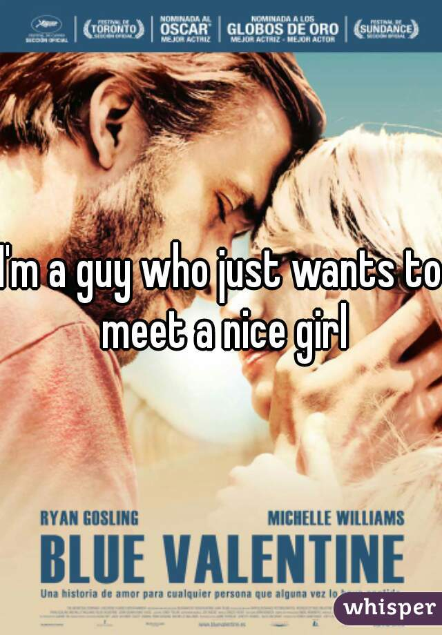 I'm a guy who just wants to meet a nice girl