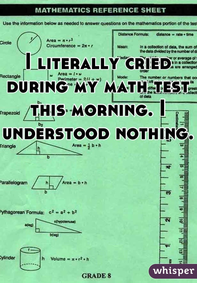 I literally cried during my math test this morning. I understood nothing.
