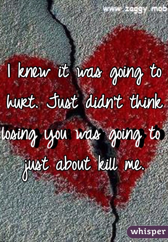 I knew it was going to hurt. Just didn't think losing you was going to just about kill me.
